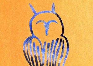 Arte Musica La Nef L'Ombre et le hibou