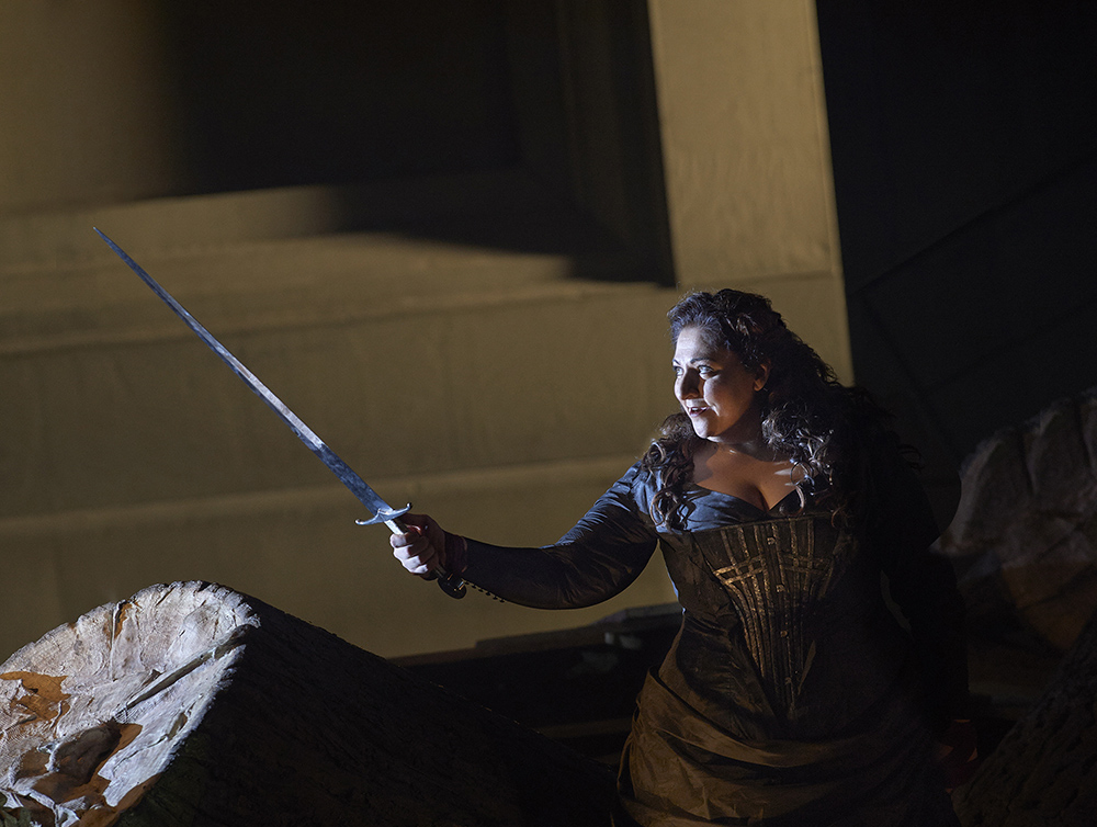 Christine Goerke as Brünnhilde in the Canadian Opera Company production of Die Walküre, 2015. Photo: Michael Cooper