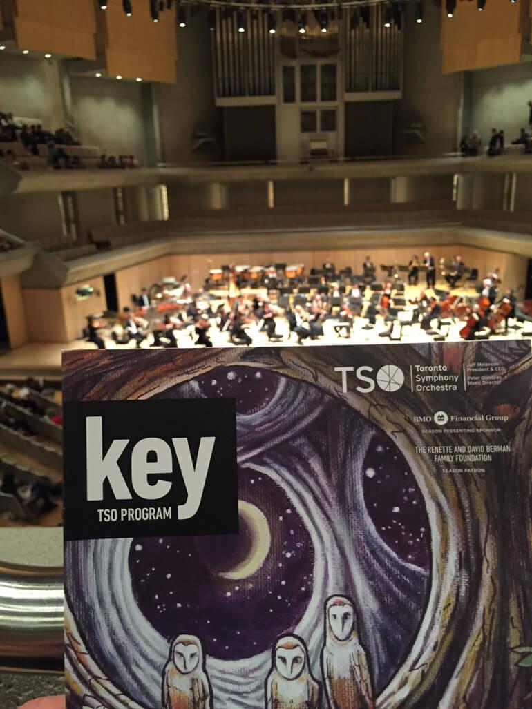 TSO Concert (Photo: Michael Vincent)