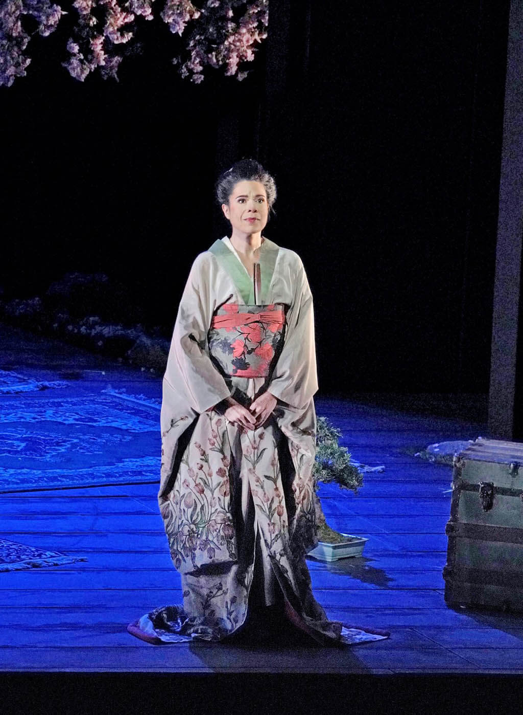 Ana Maria Martinez as Cio-Cio-San (Photo: Ken Howard)