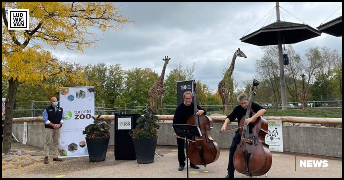 Left to Right: Dolf DeJong, CEO, Toronto Zoo, Paul Rogers and Timothy Dawson, Double Bass Players, Toronto Symphony Orchestra (Photo: Toronto Zoo)